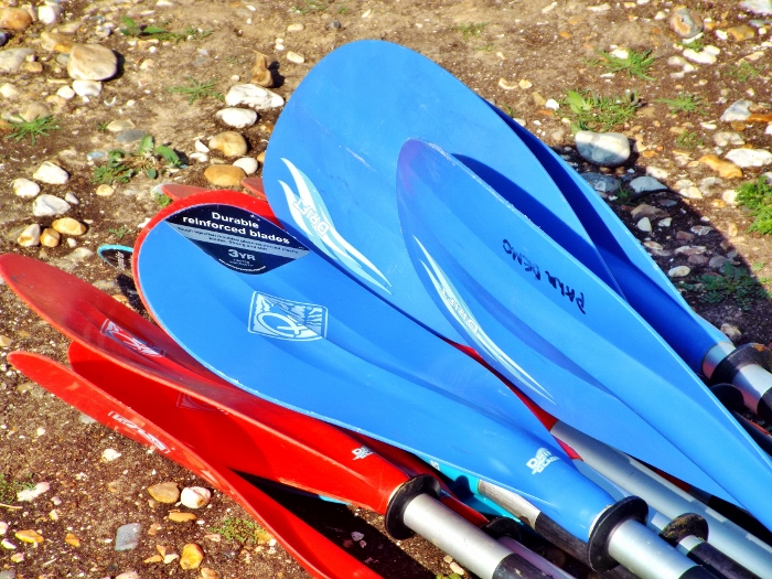Choosing your next kayak paddle – a paddler's journey 7